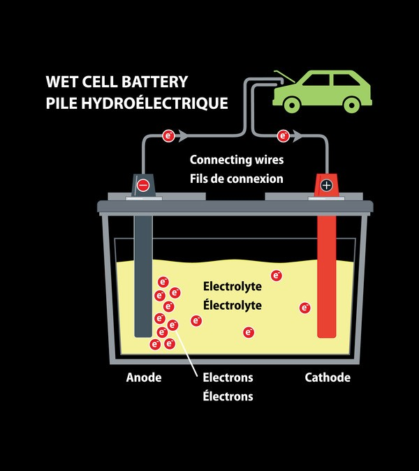 Wet (Liquid) Cell Battery with Components